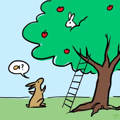 140426_bunny-hare