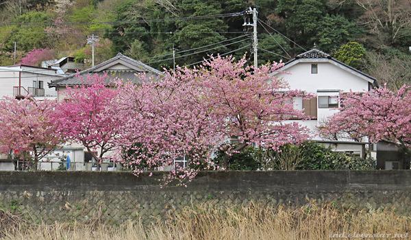 jp15_2-20
